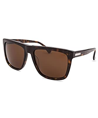 CK PLATINUM Sunglasses CK4255S 004 Havana 54MM