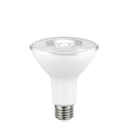 EcoSmart 75W Equivalent Daylight PAR30 Dimmable LED Flood Light Bulb (2-Pack)