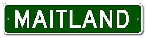 The Lizton Sign Shop Maitland  Florida U S A  Custom America Aluminum Metal Street Sign   Green   6 X24
