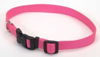 Coastal Pet Tuff Side Release Adjustable Dog Collar (Neon Pink, 18-26 Inch L x 1 Inch W)