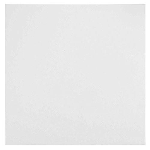 White Porcelain Floor Tiles (SomerTile FTC13LSW Renard Porcelain Floor and Wall Tile, 13