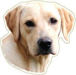 Yellow Labrador Retriever - Accessories Labrador Decorative Retriever