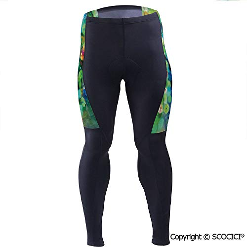 Outdoor Cyclist Bicycle Pants Riding Bike Wear,Blooms Clusters from Branch Spri (Airless Bicycle Tires That Never Go Flat)