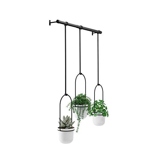Umbra Triflora Hanging Planters for Window, Indoor Herb Garden, White/Black