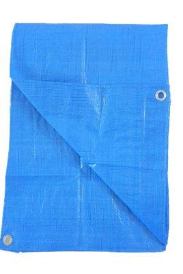 Kaps Tex KT-LT0810B Storage Tarp Cover, Light Blue Polyethylene, 8 x 10-Ft. - Quantity 1 by KAPS TEX CO LTD