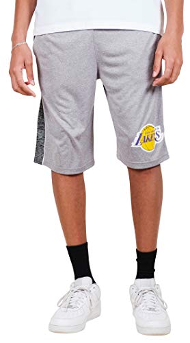 Ultra Game NBA Los Angeles Lakers Men's Mesh Athletic Active Basketball Shorts, Heather Gray, Small