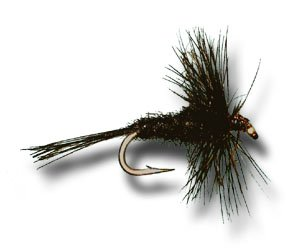 Midge Dry Fly (Midge Dry Black Fly Fishing Fly - Size 24 - 3 Pack)