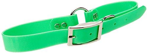 Mendota Pet Dog Safety Collar, Green, 1 x 24-Inch