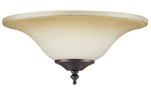 Concord Y-202S-AAS Glass Bowl Shade for Use with Y-2001 Fitter (Glass Bowls Concord)