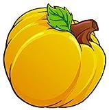 Pumpkin Patch Classic Accents