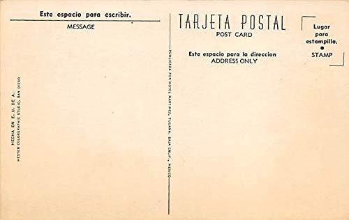 Bull Ring, Plaza de Toros Tarjeta Postal Bullfighting ...