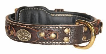 Dean & Tyler Dean's Legend Leather Dog Collar with Black Padding and Solid Brass Hardware, 28 by 1-1 2-Inch, Brown