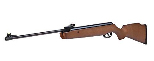 Crosman Vantage CVAN82W Break Barrel Air Rifles Nitro Piston .22, sights