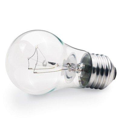 - Phillips 390773 40 Watt Long Life Home Appliance Light Bulb 2 Count