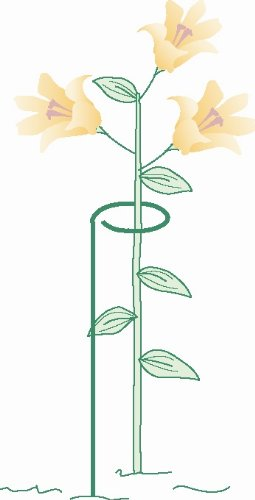 Bosmere 24'' Single Plant Stem Support with 3'' Hoop, 3-Pack
