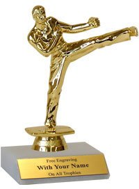 Martial Arts Trophy - Karate Trophy - 6