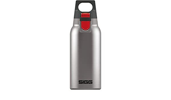 Amazoncom Sigg 85817hot And Cold One Brushed Look Drinking
