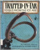 Trapped in Tar: Fossils from the Ice Age (A Junior Library Guild Selection) offers