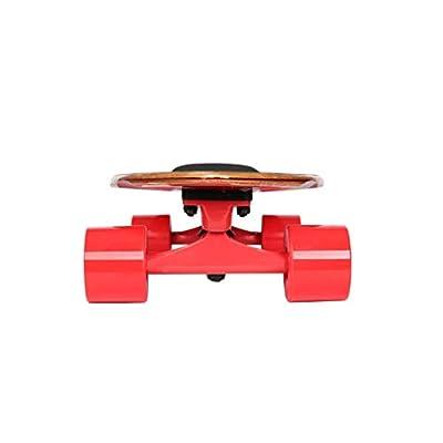 Aniseed Cruiser Skateboards Deck Wood Complete Skateboard 27 Inch Longboard White Cat : Sports & Outdoors