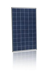 Jinko Solar 265W Poly Blk Wht 1000V Solar Panel   Pack Of 4