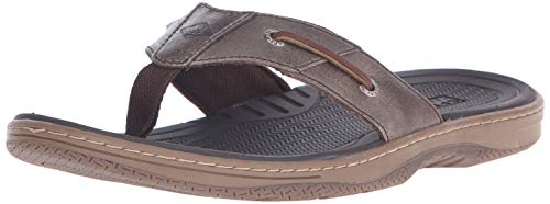 Sperry Top-Sider Men's Baitfish Thong Fisherman Sandal, Brown, 10 M US