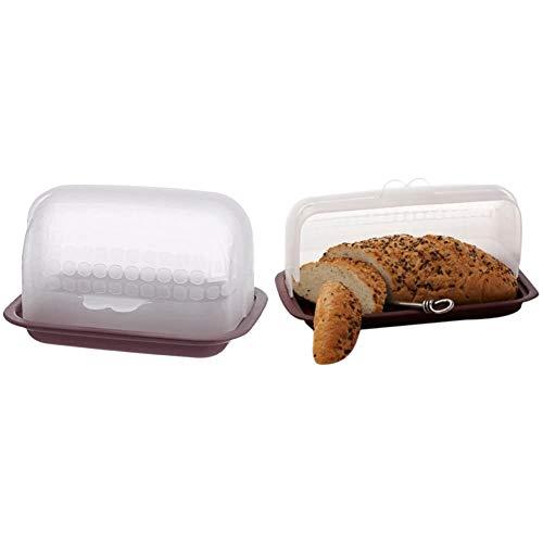 Signoraware Small Butter Box, Maroon & Signoraware Big Bread Box, Maroon