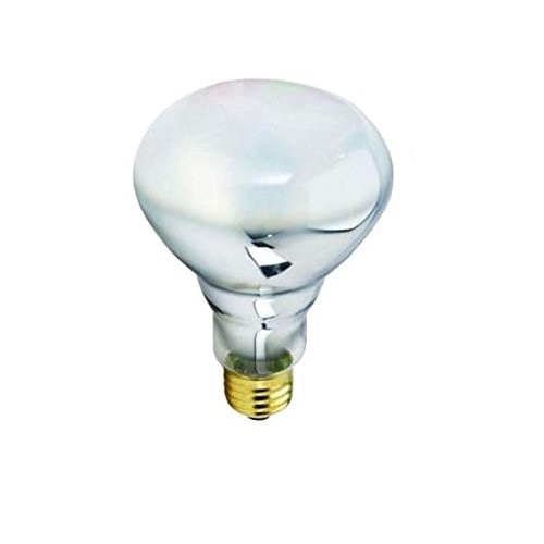 Philips 50 Watt Halogen Flood Light Bulb in Florida - 9