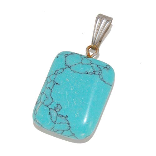 (Steampunkers USA Unchained Core Elements - 20mm Rectangle Tag Rounded Turquoise Blue - Pendant Only - Natural Gemstone Tribal Ethnic Carved Necklace - Stainless Steel Bail)