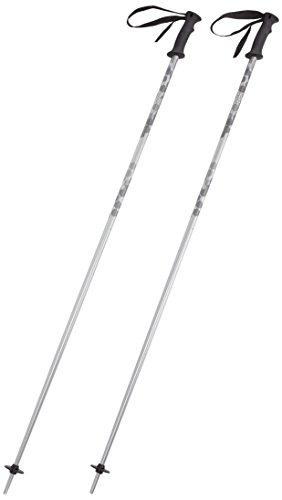 HEAD Erwachsene Skistock Multi, Silver, 120, 381815
