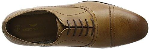 Red TapeStowe - Zapatos Planos con Cordones hombre Marrón (Tan)