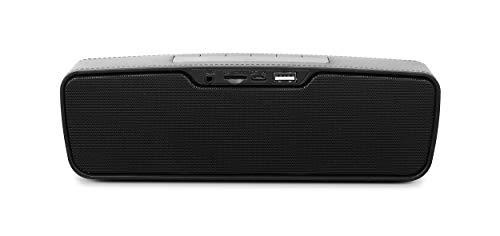 Zebronics Punch Portable Bluetooth Speaker (Black)