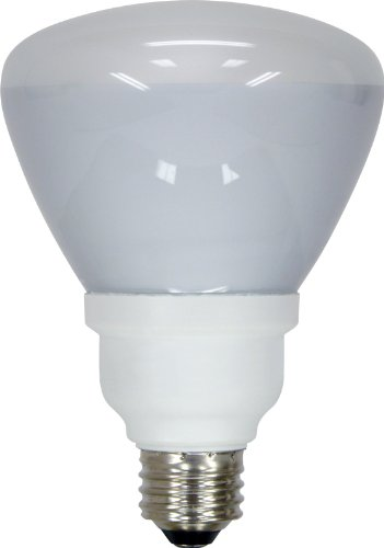 GE 21709 Energy Smart 15 Watt R30 Dimmable CFL Floodlight ()