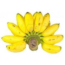 Fresh Thai Bananas (5lb)