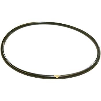 Amazon.com: Hayward CLX200K Pool Chlorinator Lid O-Ring for CL200 ...