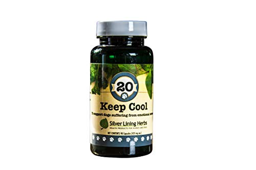 Mg Capsules 435 100 (Silver Lining Keep Cool Caps - 90 Count)