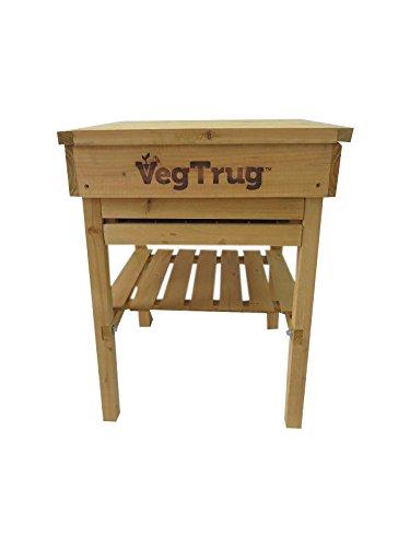 VegTrug Mesa de instalación de Mesa Cultivo niños con ...