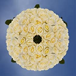 Wholesale White Roses | 250 Blizzard Roses, for Valentine's Day