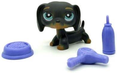 lps dachshund #675 Littlest Pet Shop toy Dog Savannah Savvy Blue Eye puppy
