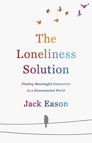 Book Cover: Loneliness Solution
