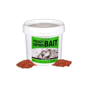 Amazon Com Kaput Pocket Gopher Bait 10 Lbs Home And