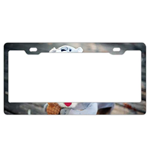 Dog Costume Squirrel10 License Plate Frame, Aluminum Metal Auto License Plate Holder, Car License Plate Cover for Front or Back License Tag]()