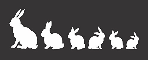 "Barking Sand Designs Bunny Family - Die Cut Vinyl Window Decal/Sticker Car/Truck 8""x2.5"""