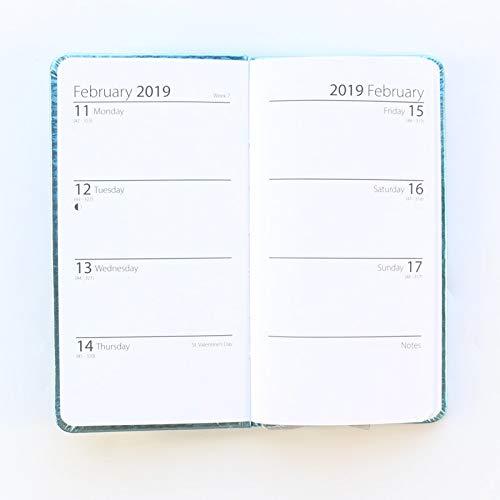 Amazon.com: Domikee 2019 Year Calendar School Student ...