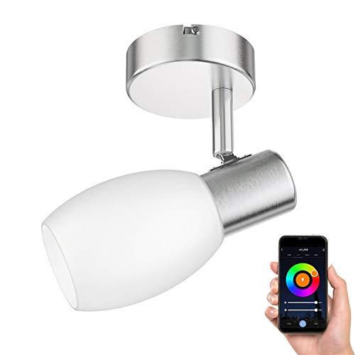 ledscom.de Plafondlamp LUPI, enkele vlam, incl. Smart Home RGBW E14 LED lamp, 5.6W=46W, 560lm