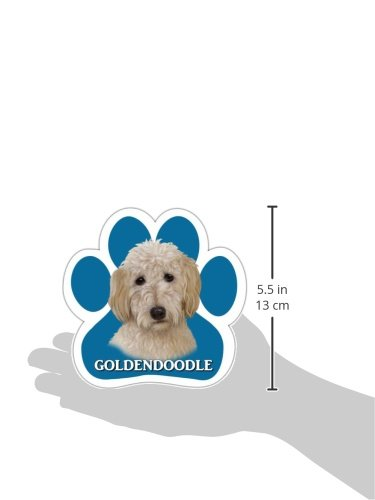 Goldendoodle-Car-Magnet-With-Unique-Paw-Shaped-Design-Measures-52-by-52-Inches-Covered-In-High-Quality-UV-Gloss-For-Weather-Protection