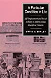 A Particular Condition in Life : Self-Employment and Social Mobility in Mid-Victorian Brantford, Ontario, Burley, David G., 0773511997