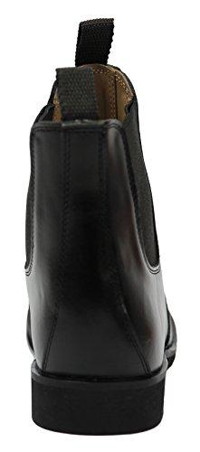6b4d38c378ddb Hispar Ladies Jodhpur Ankle English Horse Riding Boots - Buy Online ...