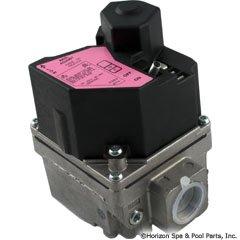 Hayward IDXLGSV0002 Natural to Propane Gas Conversion Val...
