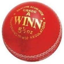 3M Pelota de Cricket roja Winn, Paquete de 3 Bolas de Cricket de 4 ...