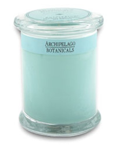 Archipelago Botanicals Excursion Soy Candle in Glass Jar #Charleston 60 Hour, Health Care Stuffs